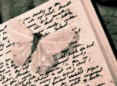 diary-image